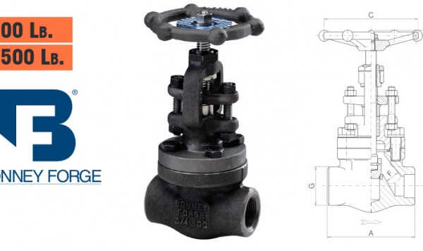 Bonney Forge Bolted Bonnet- 800 lb. & 1500 lb. Globe Valves