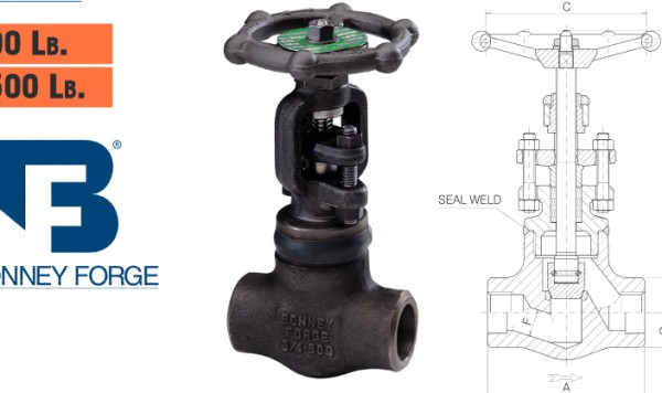 Bonney Forge Welded Bonnet- 800 lb. & 1500 lb. Globe Valves