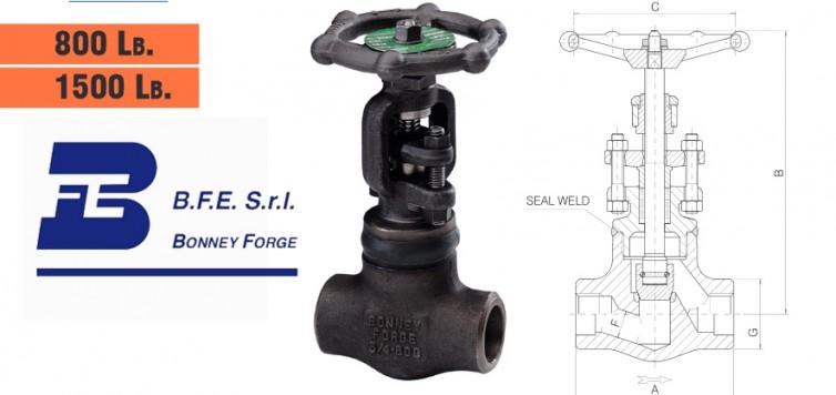 Bonney Forge Welded Bonnet- 800 lb. & 1500 lb. Globe Valves