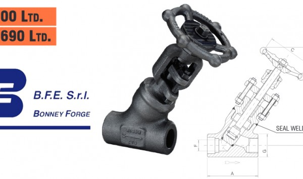 Bonney Forge Welded Bonnet (Y type)- 800 lb. & 1690 lb. Globe Valves