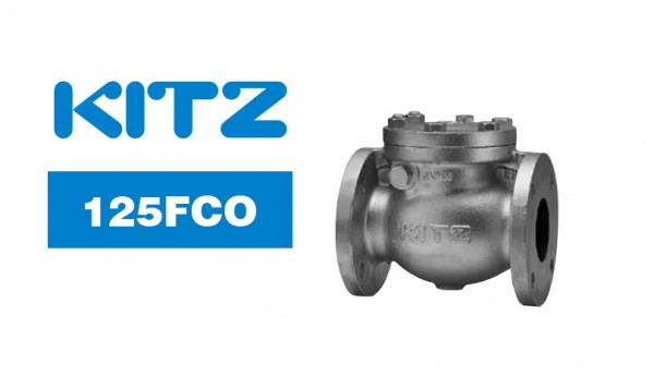Kitz 125FCO Cast Iron Swing Check Valve