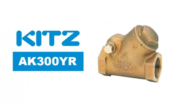 Kitz AK300YR Bronze Y-Pattern Swing Check Valve