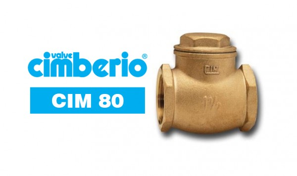 Cim 80 Brass Swing Check Valve – Metal To Metal Seating