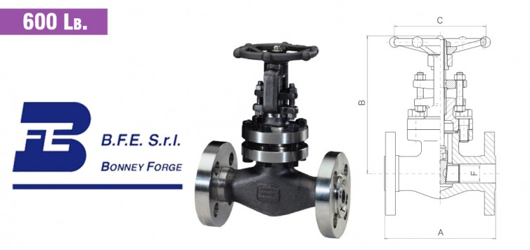 Gate Type- Bolted Bonnet- 600 lb. valves