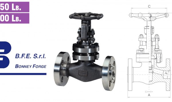 Globe Type- Bolted Bonnet- 150 lb. & 300 lb. valves