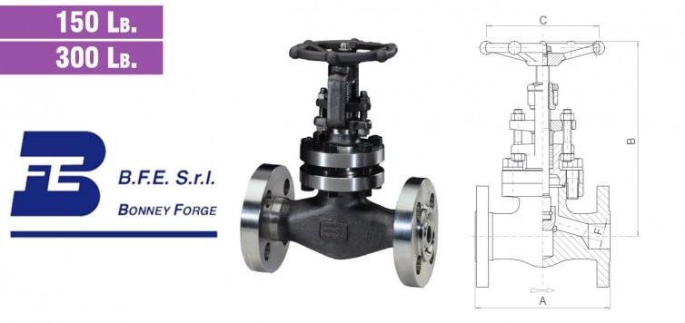 Globe Type- Bolted Bonnet- 150 lb. & 300 lb. valves