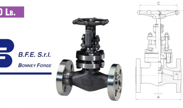 Globe Type- Bolted Bonnet- 600 lb. valves