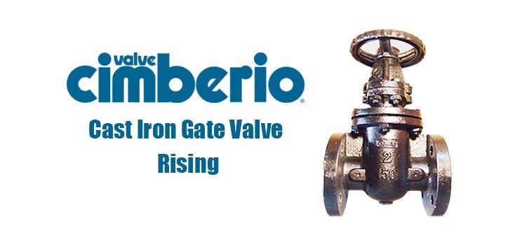 Cim Cast Iron Gate Valve Rising