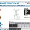Kitz AKCA Bronze Angle Valve