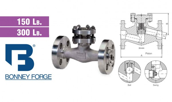 Bonney Forge Check Valve Type- Bolted Bonnet- 150 lb. & 300 lb. valves